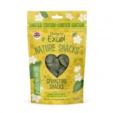 Burgess Excel Springtime Foreage Bakes With Lemon Balm & Elderflower For Rabbits & Guinea Pigs 60g