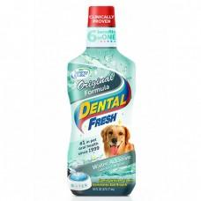 SynergyLab Dental Fresh Original 17oz