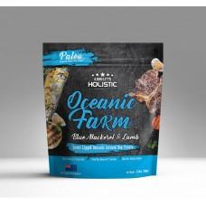 Absolute Holistic Paleo Oceanic Farm Blue Mackerel & Lamb 100g