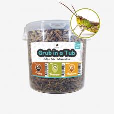 Supergrub Freeze Dried Grasshopper 400g